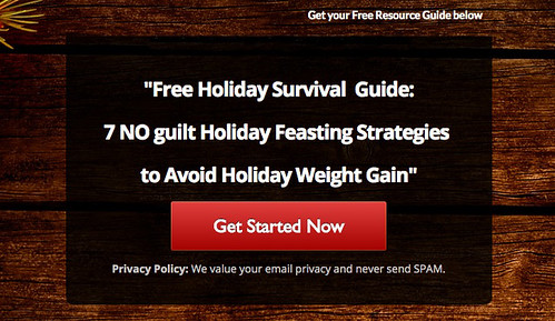 Holiday survival guide Program