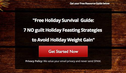 Holiday survival guide Program