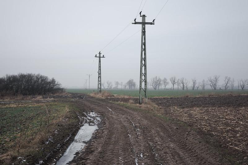 Line 262, 19,2 km,Radoszkowice/Raduschkowitz, 07.02.2018