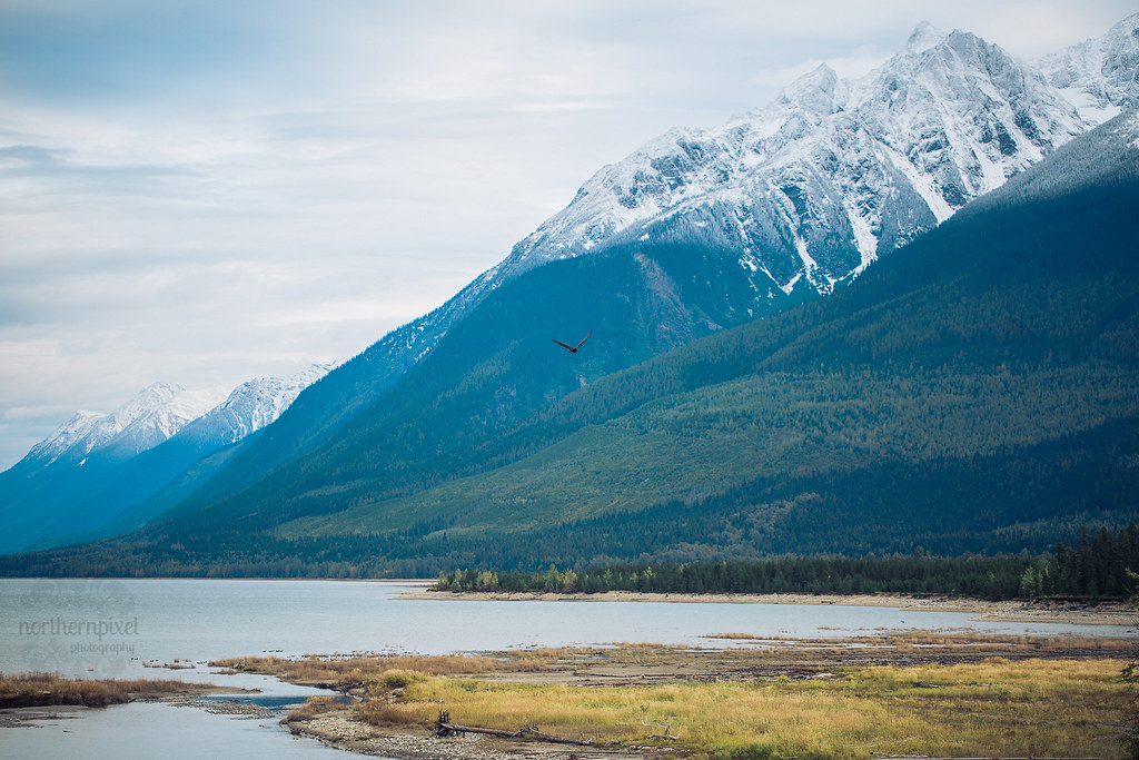 Kinbasket Lake, Valemount BC Jasper Mountains
