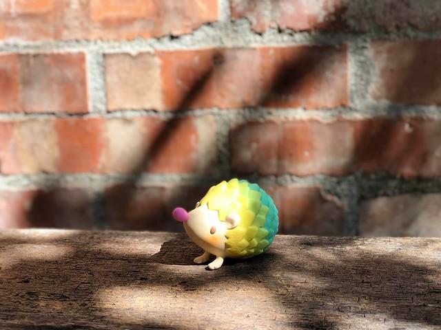 台灣本土玩具設計師最高!!fufufanny × SHON SIDE【Not Alone】2018 Paradise 台北雙人聯展