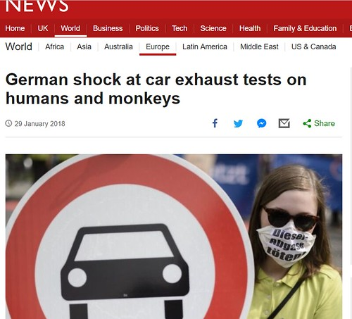 humans and monkeys2