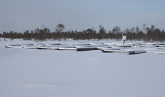The OTC site covered by white clean snow