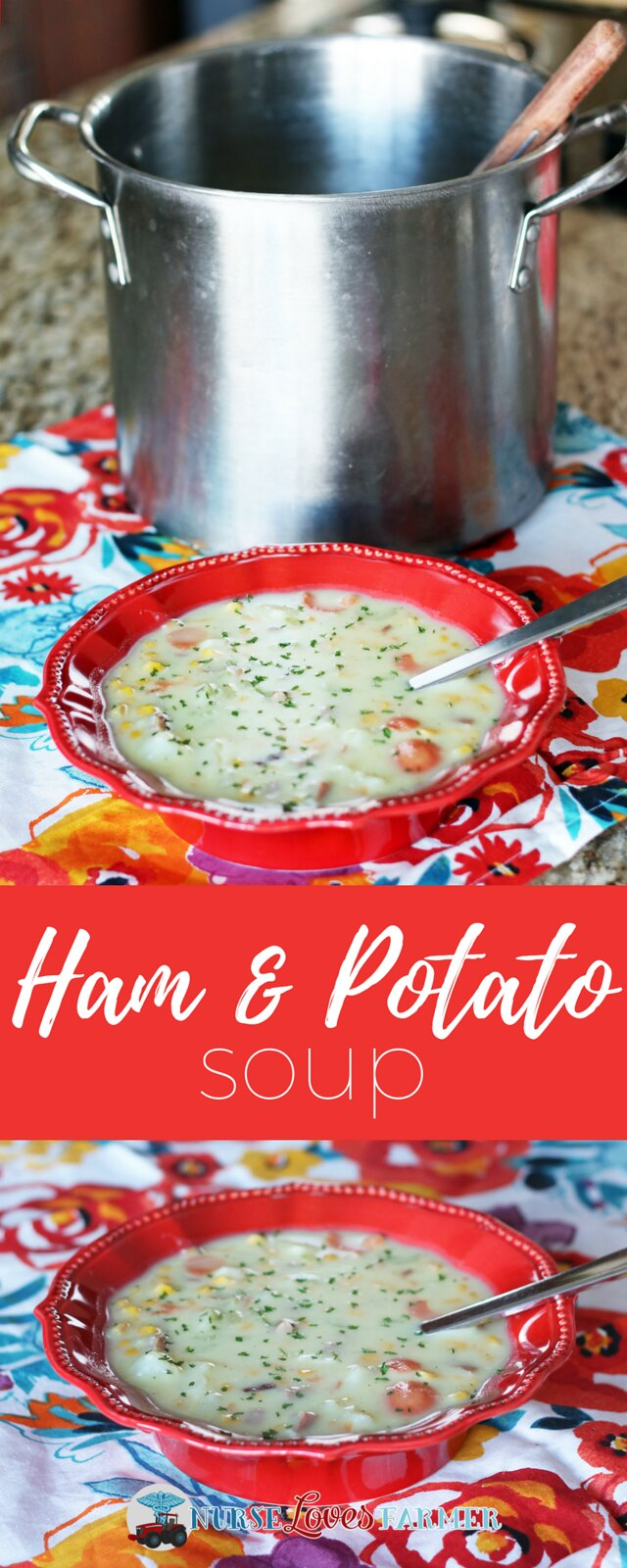 A hearty and delicious soup that is ready to eat in 45 minutes! Ham and potato soup that bursts with flavour and is full of vegetables.