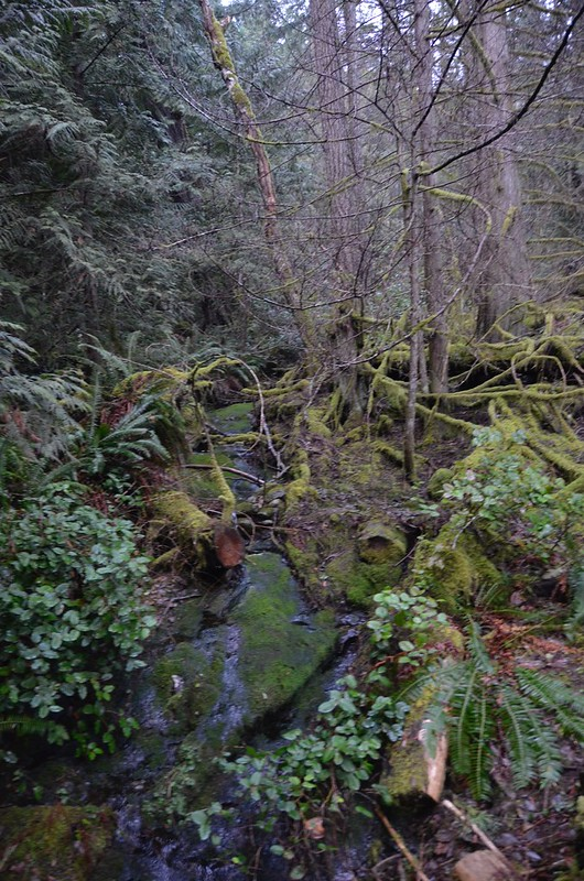 Sooke - Potholes Green