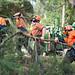 Tree Access Team 01