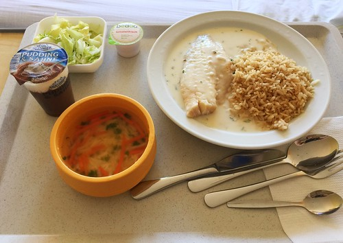 Noodle soup & Steamed redfisch with herb cheese sauce & whole grain rice / Nudelsuppe & Gedünstetes Rotbarschfilet mit Kräuter-Käse-Sauce & Vollkornreis