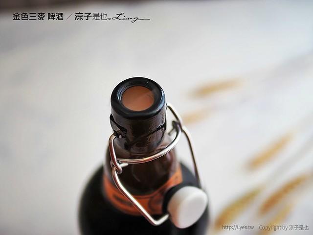 金色三麥 啤酒 10