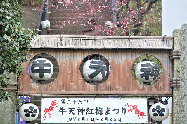 ushikitano-gosyuin02034