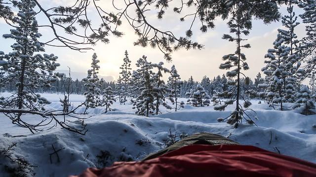 Monchegorsk to Murmansk