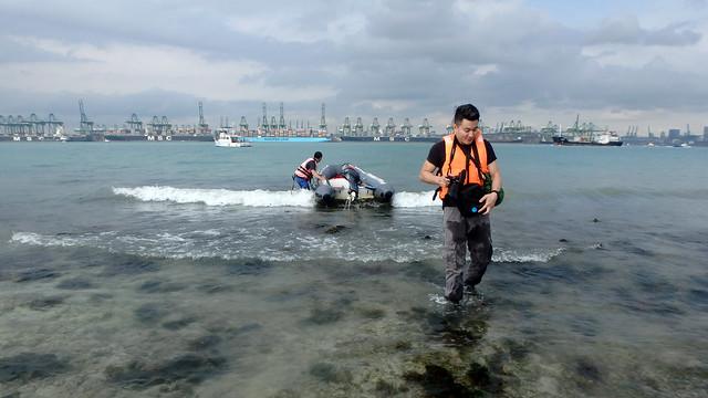 Landing on Cyrene Reef