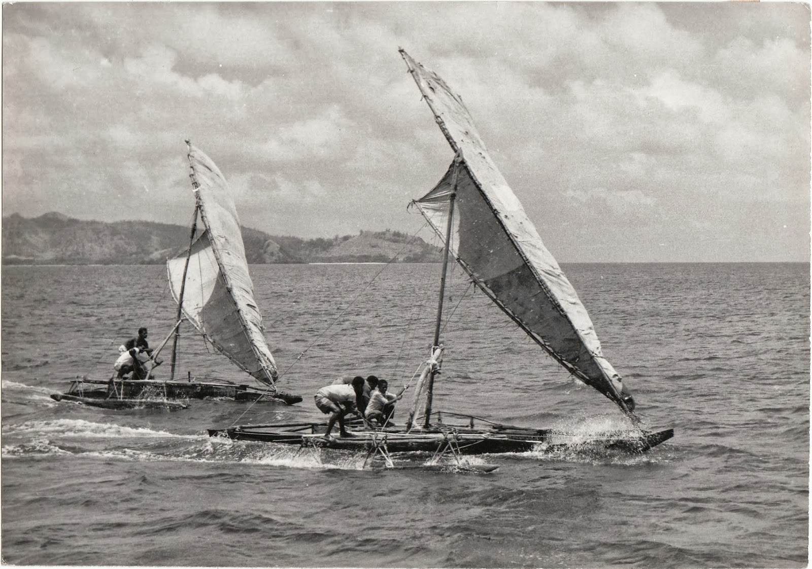 An undated photograph of Maori racing outrigger sailing canoes off the coast of New Zealand in the early twentieth century.