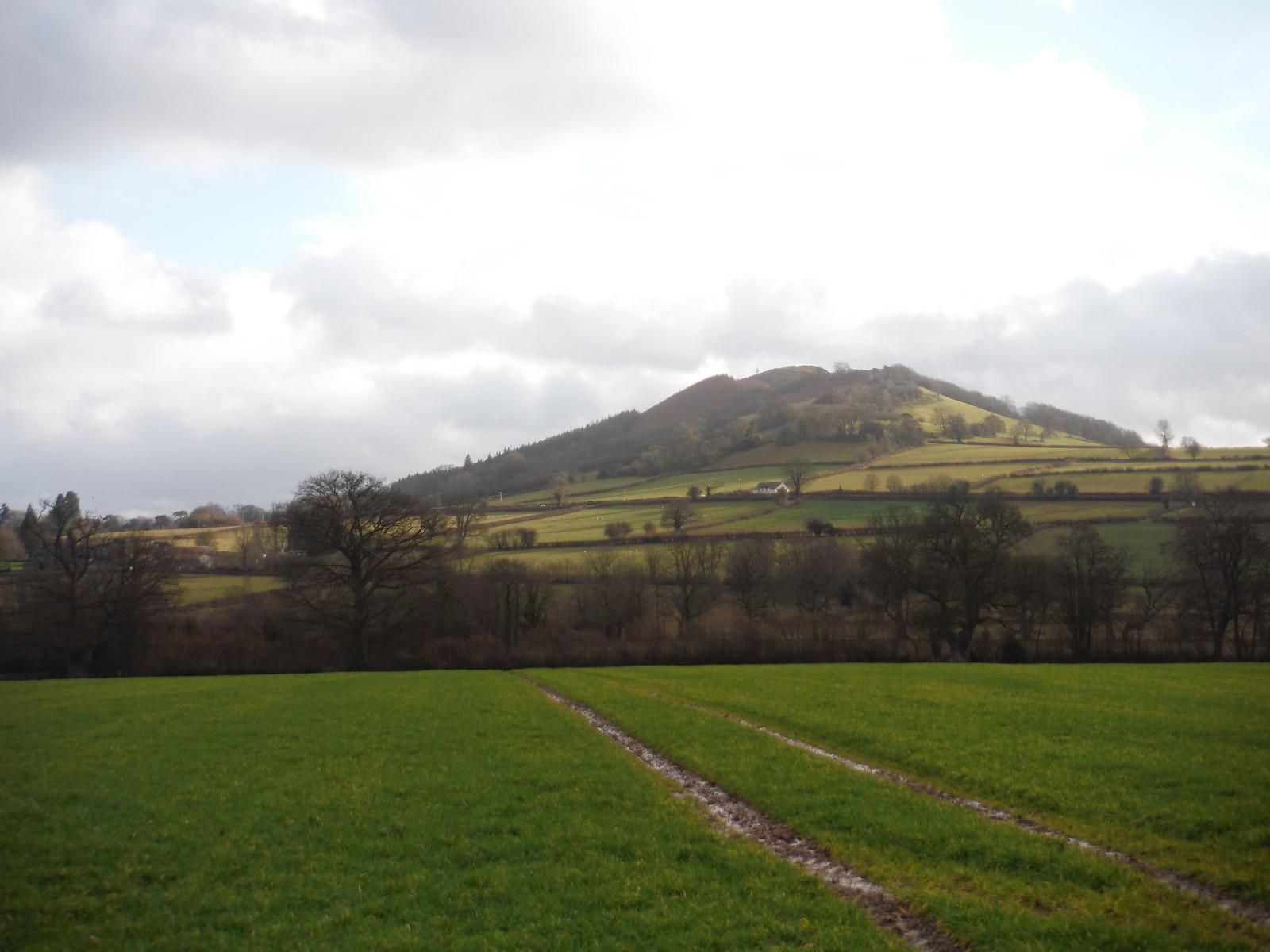 Allt yr Esgair across field SWC Walk 308 - Bwlch Circular (via Mynydd Troed and Llangorse Lake)