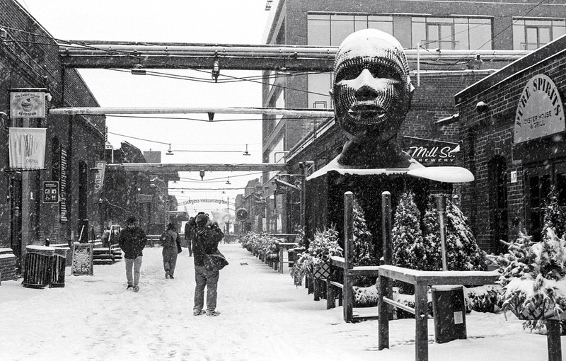 A Big Head in the Distillery District