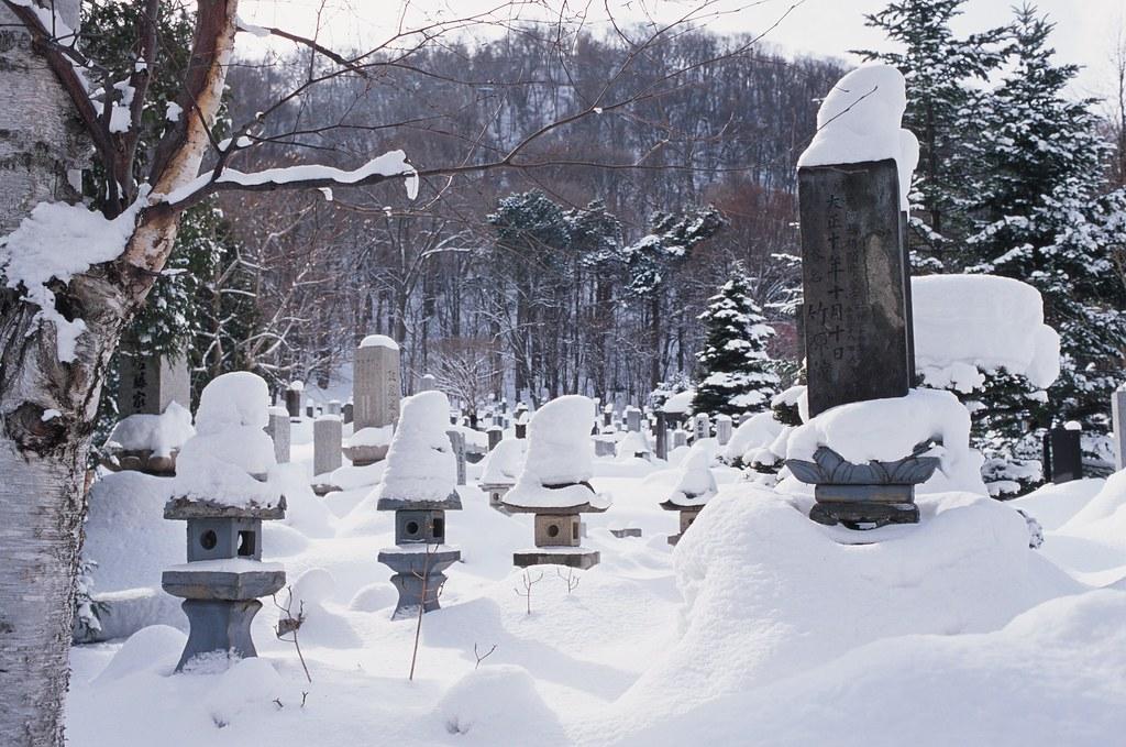 北海道神宮 Sapporo, Japan / Agfa CT Precisa / Nikon FM2 在北海道神宮前亂走逛逛,看見路旁有小小的墓園。  雪堆積得很深,即使這樣露出一點點也沒有辦法知道原本的高度如何。  每個柱子都戴上了帽子。  Nikon FM2 Nikon AI AF Nikkor 35mm F/2D Agfa CT Precisa 35mm 8704-0008 2016-02-03 Photo by Toomore