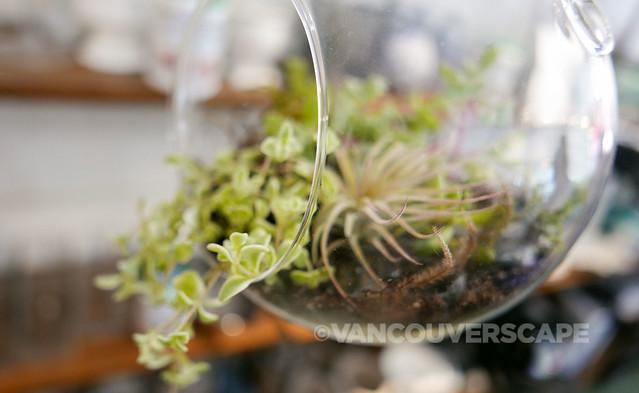 Genuine Health x The Flower Factory-8