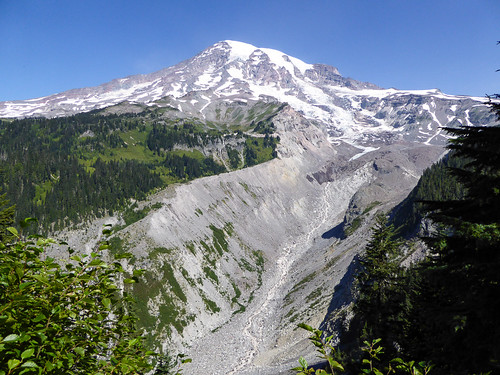 Nisqually Vista Trail