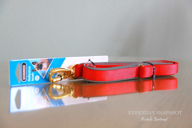Dogness Leash (2)