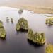Scots Pines in Loch Ossian by Joe Dunckley