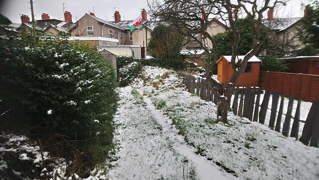 Snow / Eira