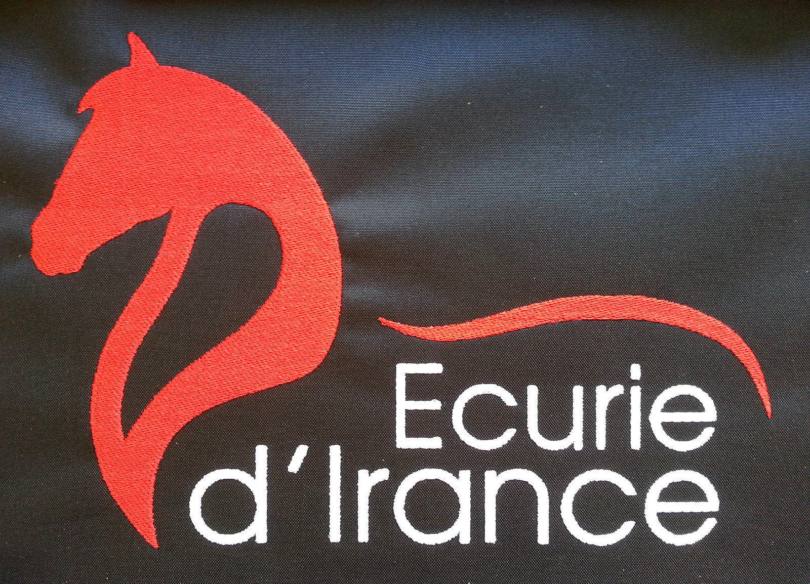 Logo veste équitation