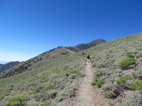 The Telescope Peak Trail as it ascends gently from the Bennett Saddle, Death Valley National Park, California
