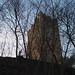 Castello di Porciano - la torre