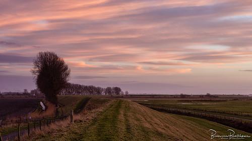 Slikken van Flakkee after sunset
