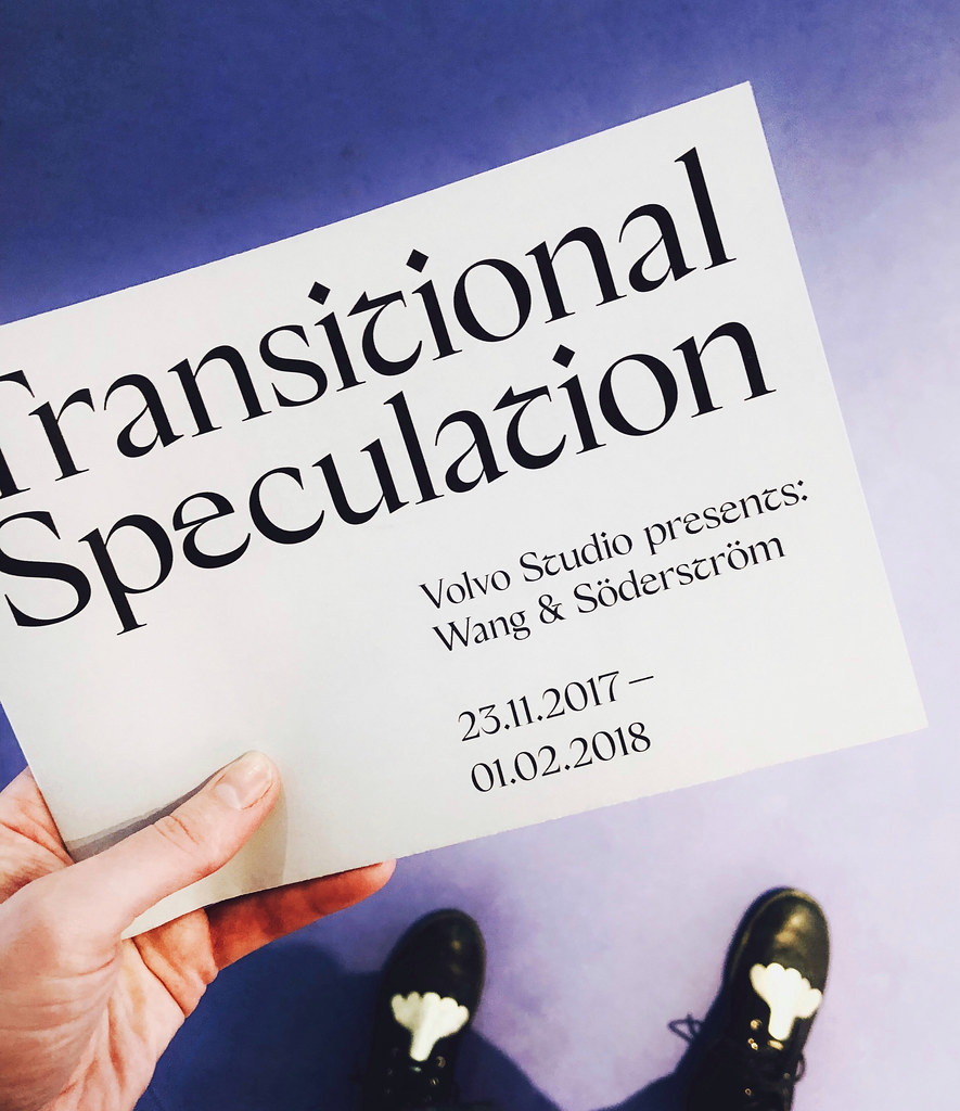 Transitional Speculation - Wang & Söderström