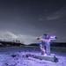 Inukshuk&Christmas Tree Lights