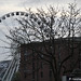 Liverpool - Wheel of Fortune