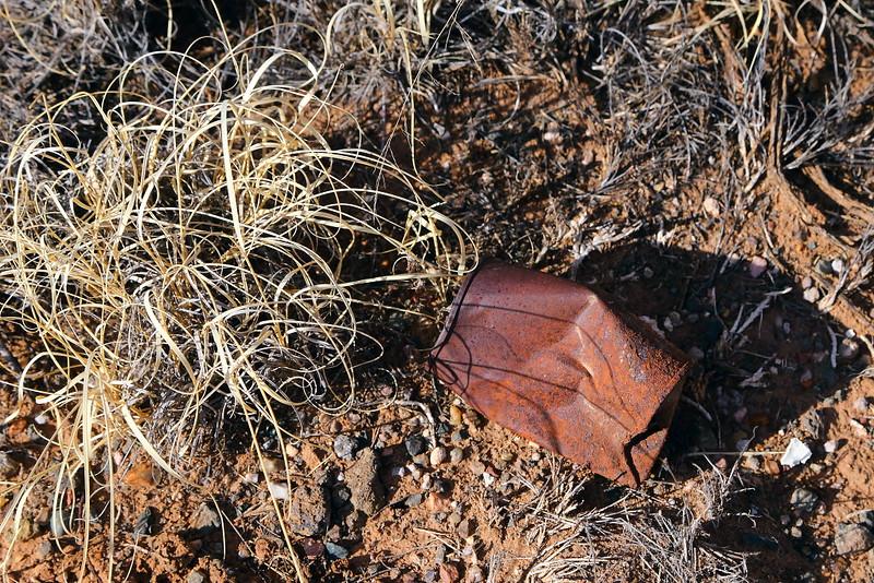 IMG_7775 Guided Off the Beaten Path Hike: Petroglyph Mesa