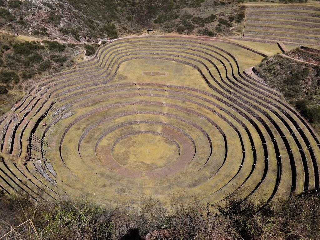 Tarasy w Moray Peru