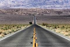 California & Nevada
