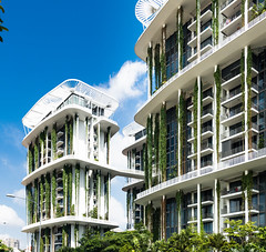 The Tembusu, Singapore Arc Studio