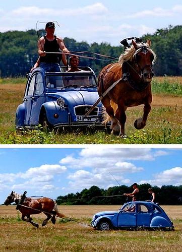 2cv blue race