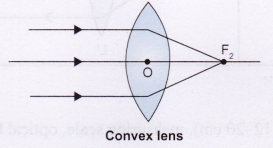 Lab Manual Class 10 Science Refraction Through Prism