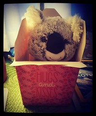 A box of full of koala hugs and kisses. Thanks @genmae5. I love you so much. :koala::black_heart_suit: