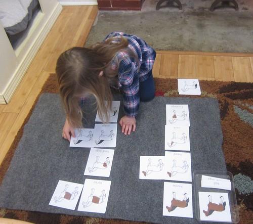 mammal nomenclature