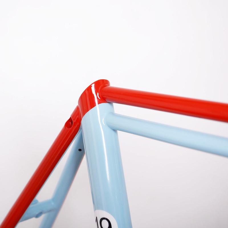 Steel Frame & Fork Repainted by Swamp Things.