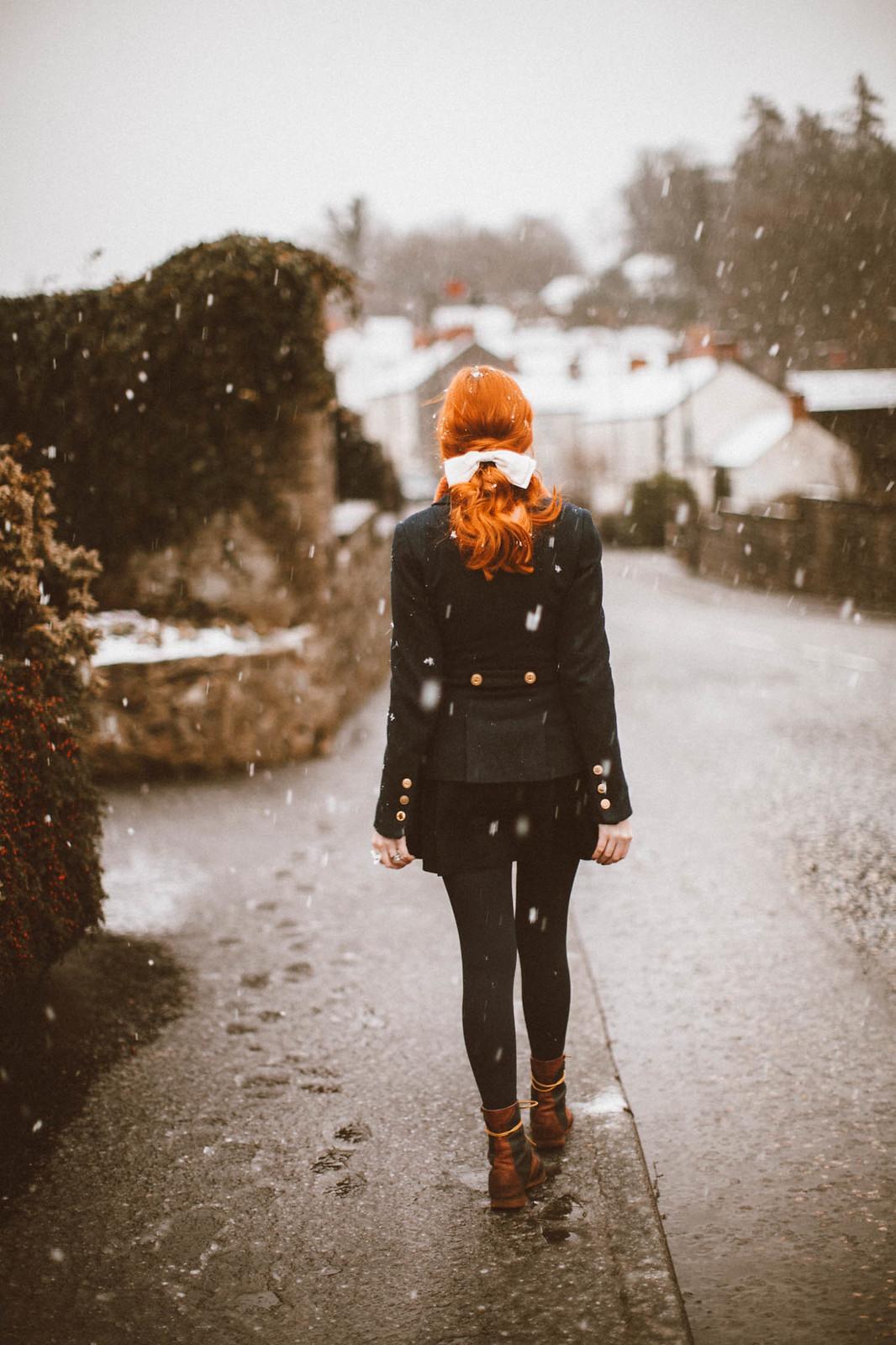 snowfox-2