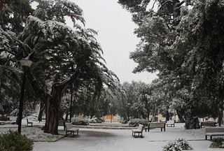 Neve - Villa (1)