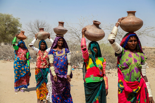 Pakistan: life in the grip of drought in the Thar Desert ...  Pakistan: life ...