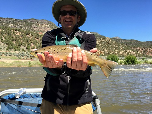 Fly fishing on the Colorado River near Vail. Photographer Ted Nelson
