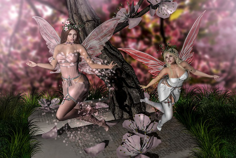 Sakura Fairies