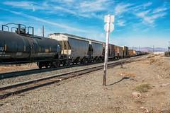 Desert Freight Train 2
