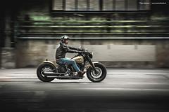 2012 Harley-Davidson Softail Slim - Shot 2