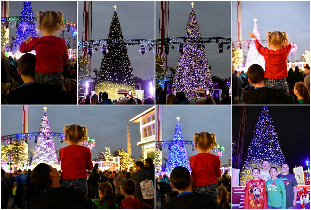 winterfest tree lighting