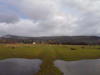 Mynydd Troed and Mynydd Llangorse from flooded field near Llangors