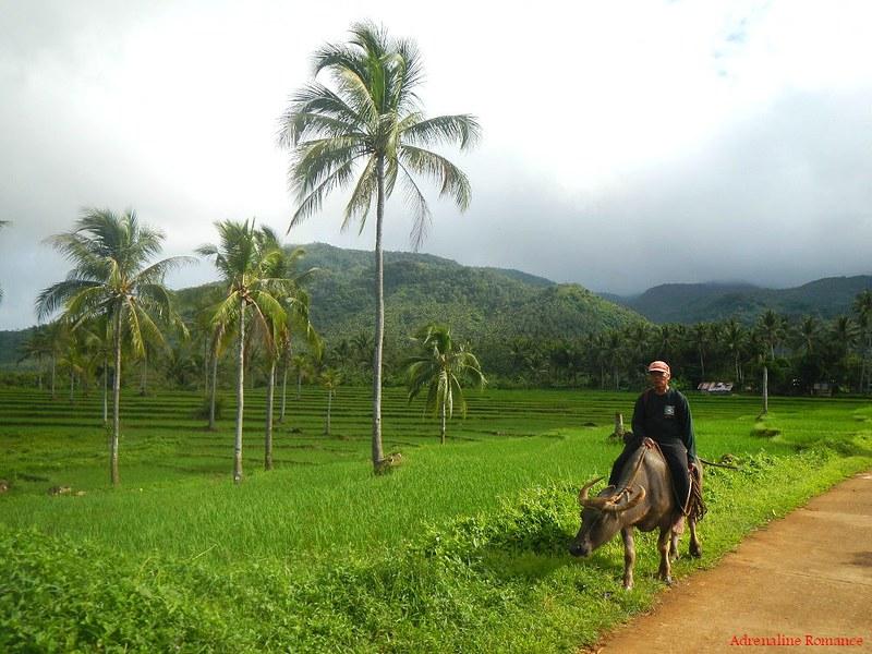 Barangay Sampao